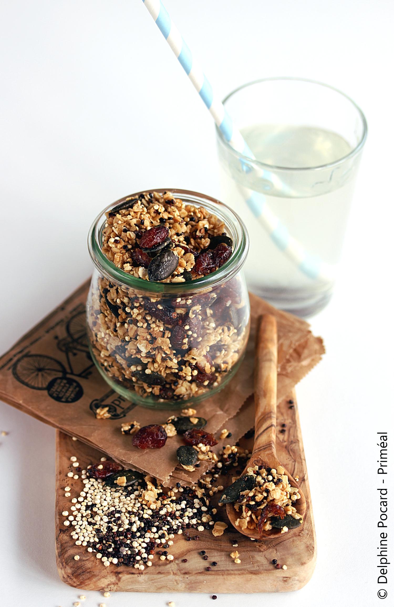 granola-2-quinoa-2-1108